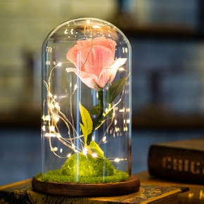 Mini Mother's Day Gifts Home Decorations Glass Cover Rose LED Light Micro Landscape USB