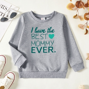 Toddler Graphic Light gray Long-sleeve Pullover