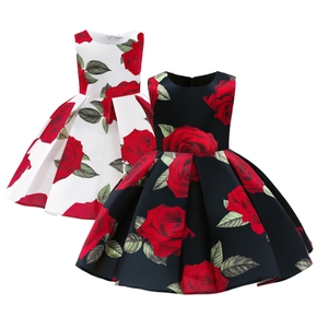 Beautiful Kid Girl Sleeveless Floral Print Pleated Costume Party dress