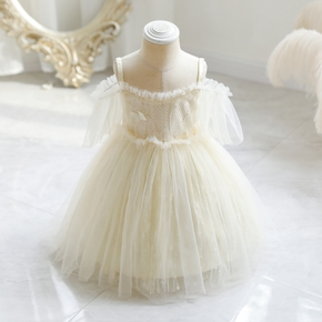 Toddler Girl Lace Flower Embroidery Off Shoulder Strap Mesh Princess Costume Party Dress