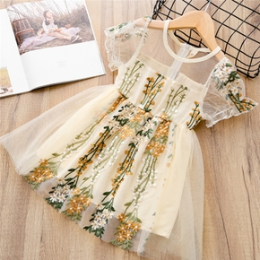 Baby / Toddler Girl Pretty Floral Decor Tulle Dress
