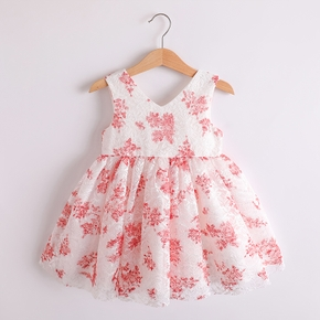 Baby / Toddler Floral Sleeveless Party Dress