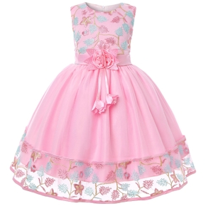Kids Girl Floral Embroidered Mesh Party Dress