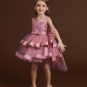 Kids Girl Lace Embroidered Bowknot Mesh Party Dress