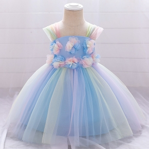 Baby / Toddler Girl Colorful Floral Party Dress