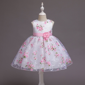 Toddler Girl Floral Print Princess Party Dress