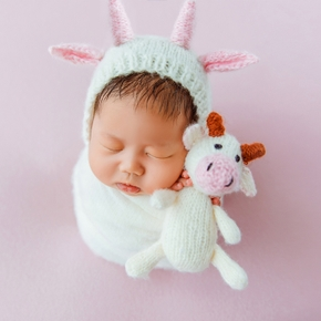 2PCS Baby Knitting Newborn Photography Cute Animal Shape Calf Doll Knitted Hand Crochet Newborn Photography Suit