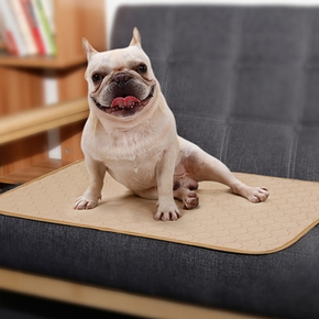 Pet changing mat (reusable)