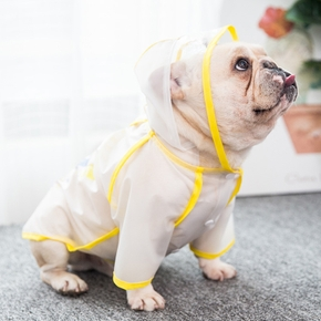 Pet Spring / Summer Raincoat