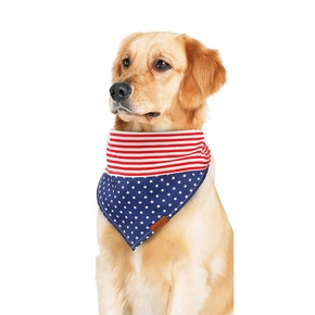 Variety of Bibs for Cat Dog