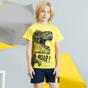 Kids Boy Dinosaur Print Tee and Shorts Set