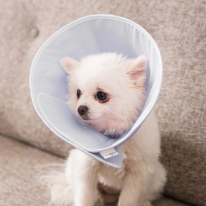 Pet Cone Collar Protective Cotton Comfy Cone Adjustable Fasteners Collar for Cat and Puppy