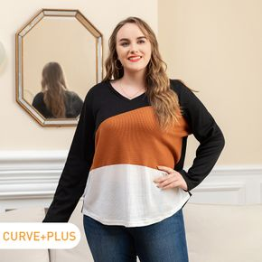 Women Plus Size Casual Colorblock V Neck Long-sleeve Tee