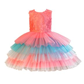 Toddler Girl Floral Embroidered Sleeveless Colorful Layered Mesh Princess Party Dress