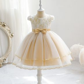 Kid Girl Floral Embroidered Bowknot Design Cap-sleeve Princess Costume Party Mesh Tutu Dress