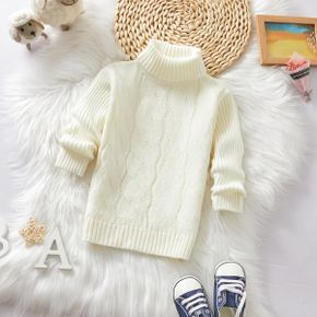 Toddler Girl/Boy Solid Cable Knit Turtleneck Sweater