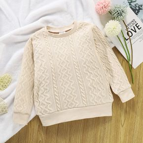 Toddler Girl/Boy Cable Knit Sweater